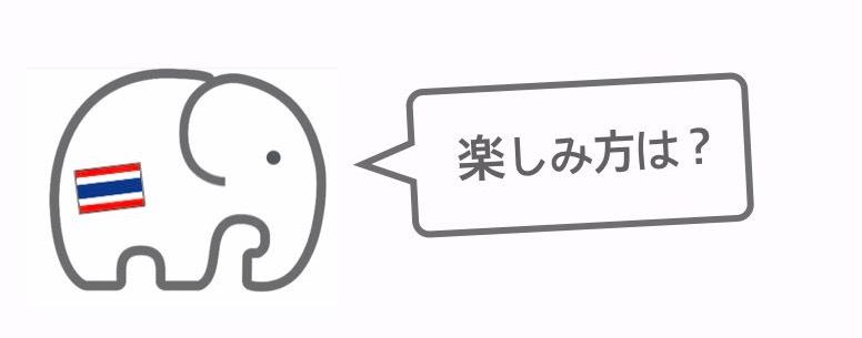 記事中画像(カオサン通り)3