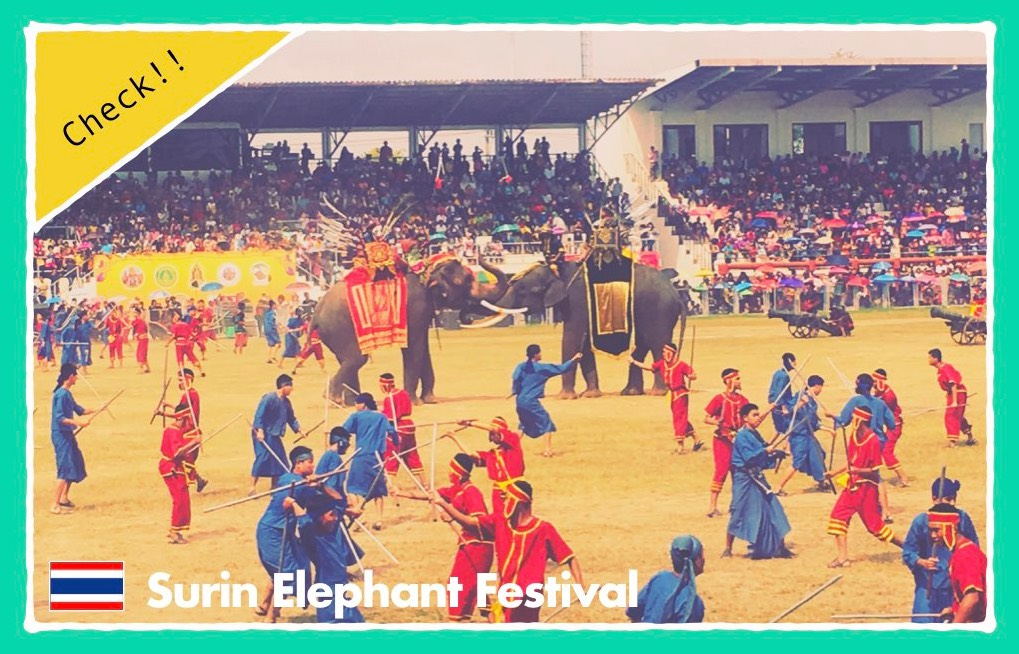 固定ペーシ(象祭り1)