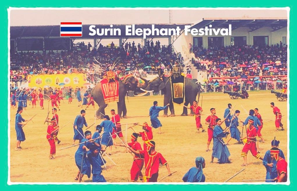 固定ペーシ(象祭り2)