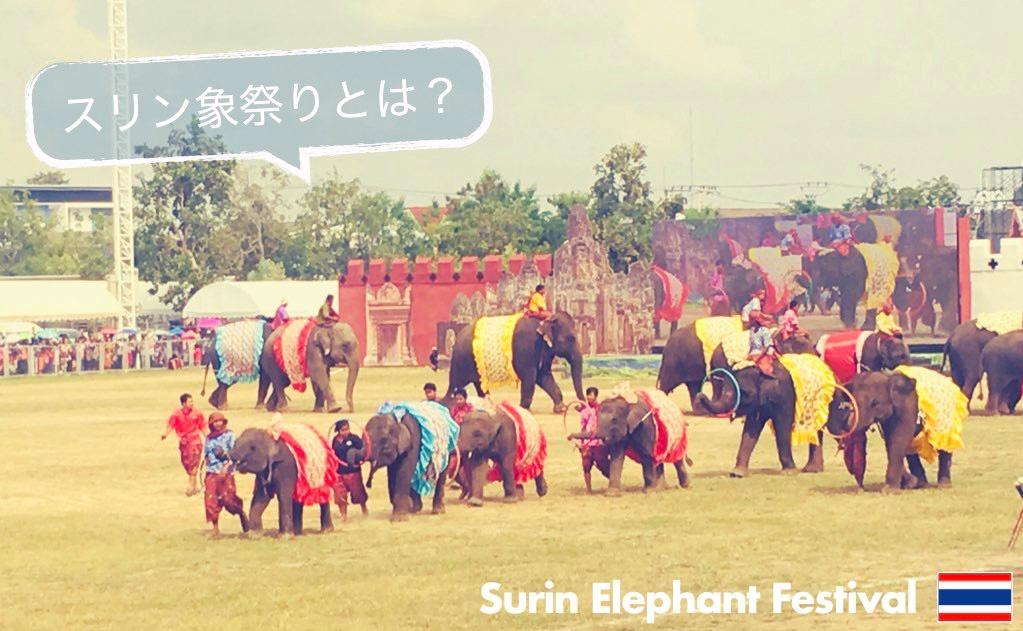 記事中画像(スリン象祭り)11