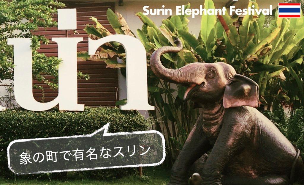 記事中画像(スリン象祭り)12