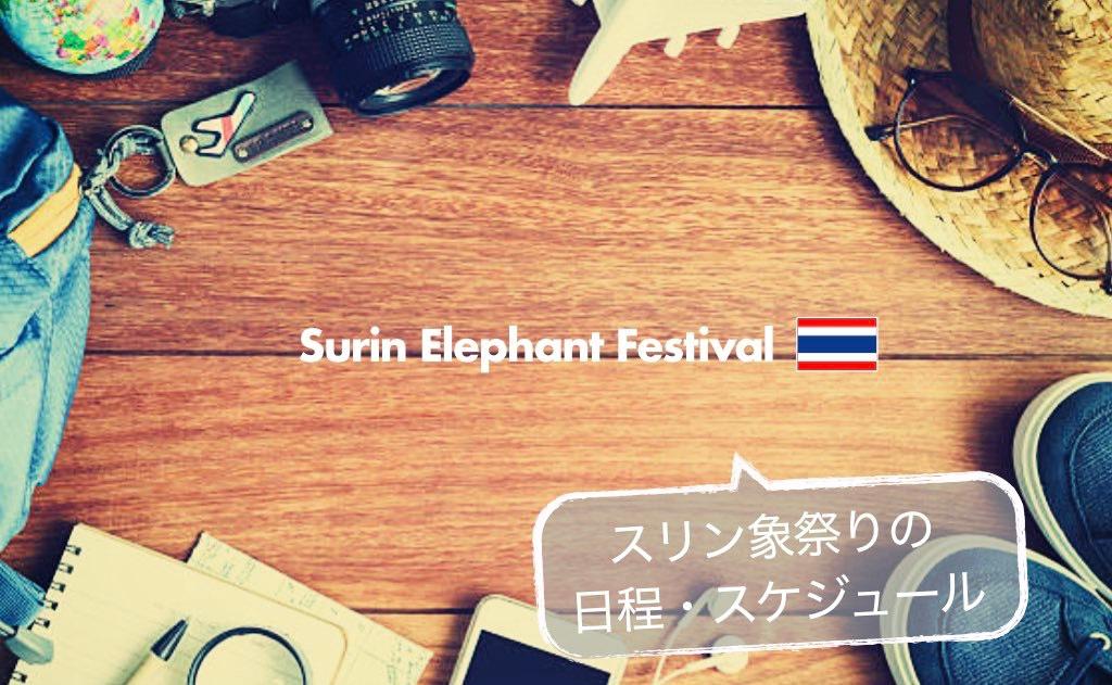 記事中画像(スリン象祭り)13