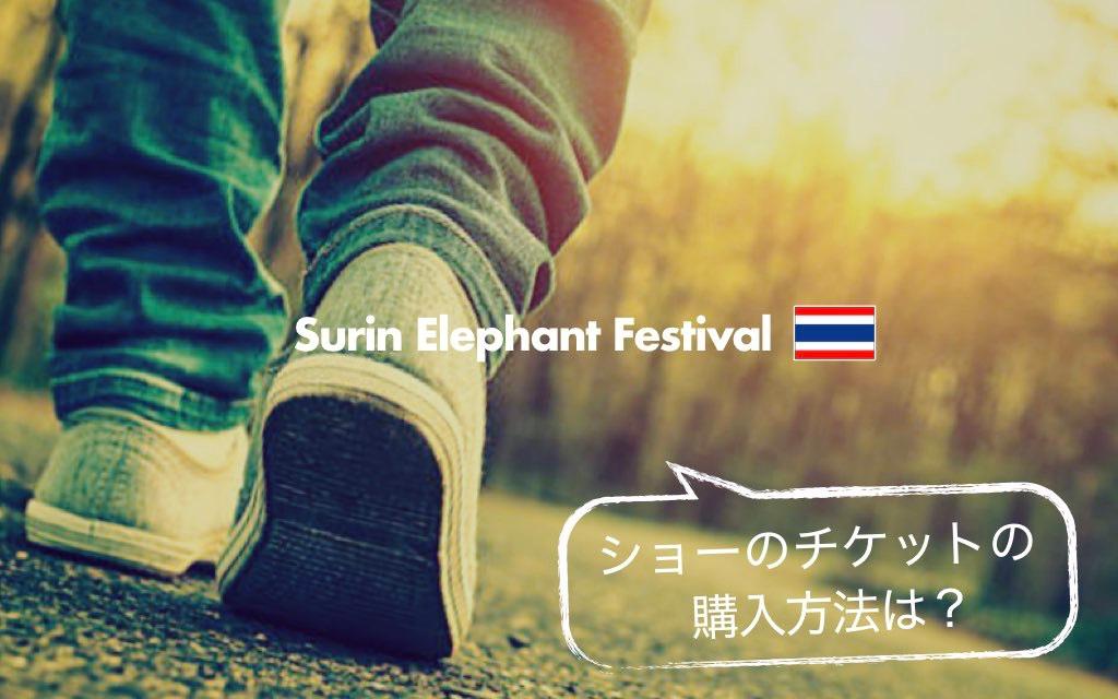 記事中画像(スリン象祭り)16