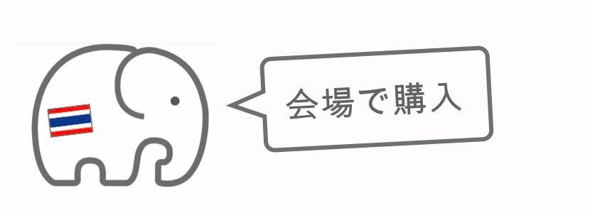 記事中画像(スリン象祭り)17