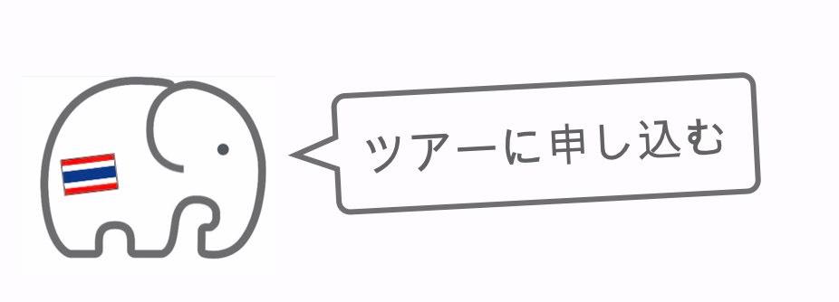 記事中画像(スリン象祭り)20