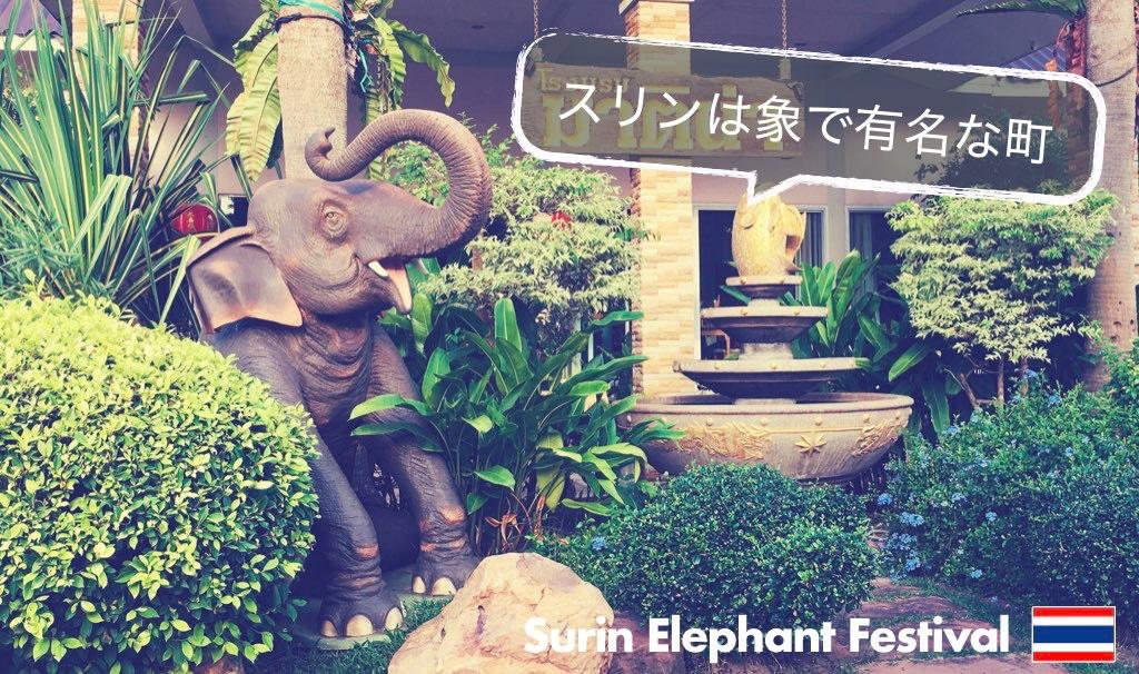 記事中画像(スリン象祭り)2