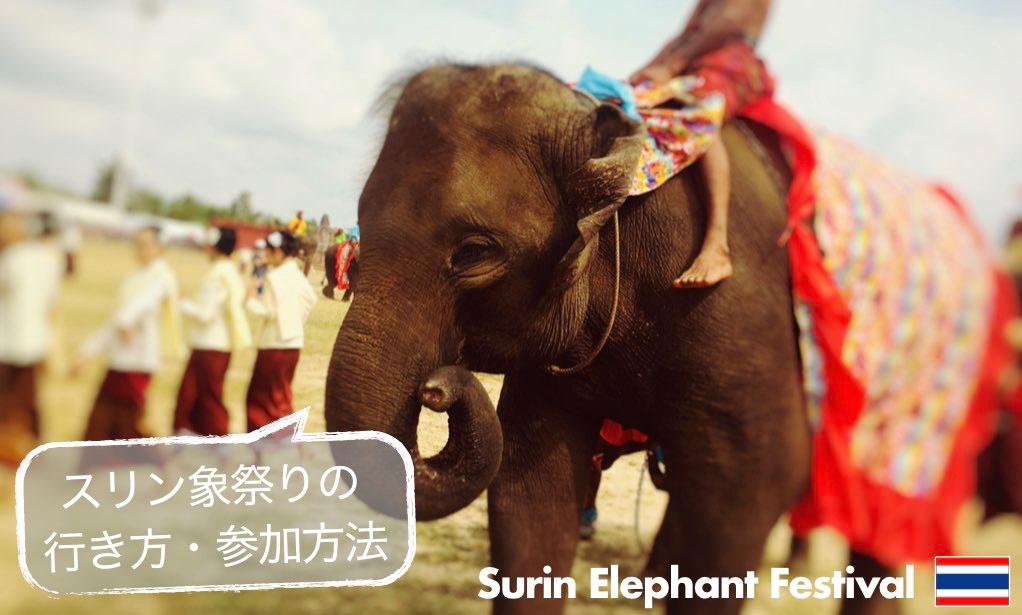 記事中画像(スリン象祭り)3