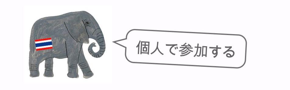 記事中画像(スリン象祭り)4