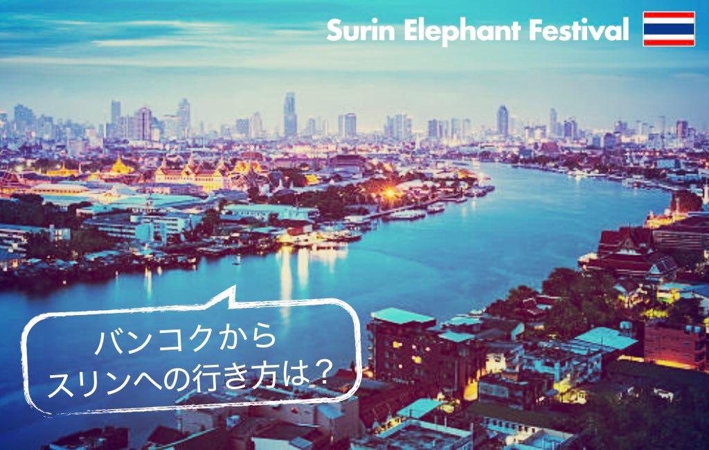 記事中画像(スリン象祭り)6