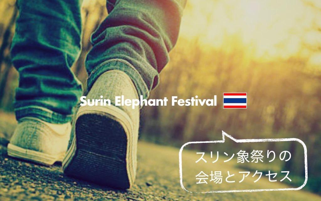 記事中画像(スリン象祭り)7