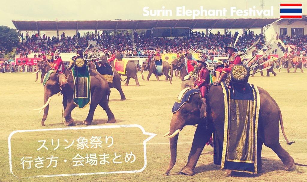記事中画像(スリン象祭り)9